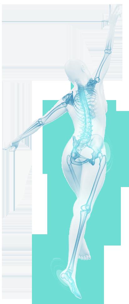 New Equilibre I Articulations au repos